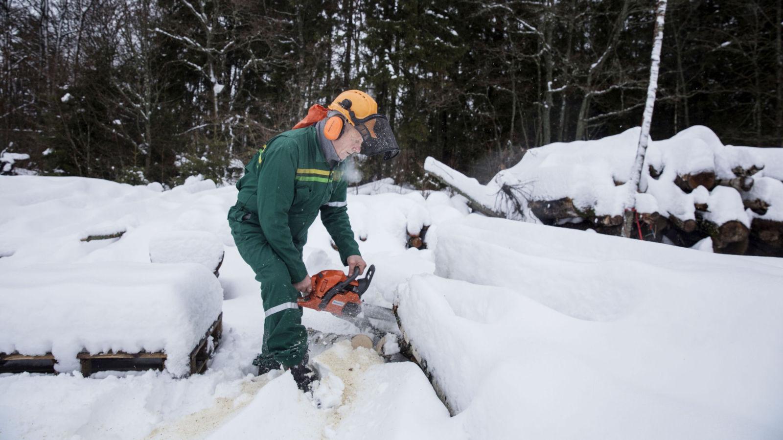 SAGER VED: Jan Erik Jørgensen har pensjonert seg fra både gårdsdrift og snekkerjobb, men trives i skogen med skikkelig skogsarbeid.
